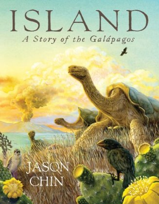 Island: A Story of the Galapagos - Cover